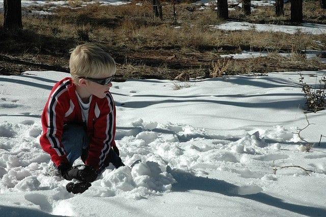 Palle di neve - foto di barnabywasson